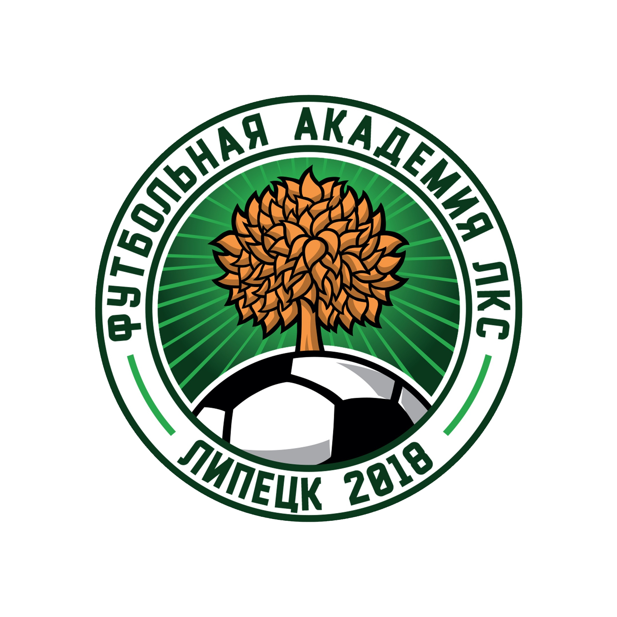 Академия МФК ЛКС